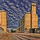 Grain Railway by Kym Howard