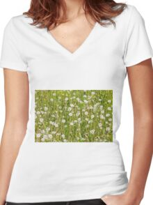 meadow background Women's Fitted V-Neck T-Shirt