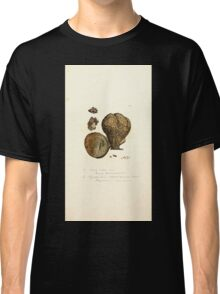 Coloured figures of English fungi or mushrooms James Sowerby 1809 1069 Classic T-Shirt