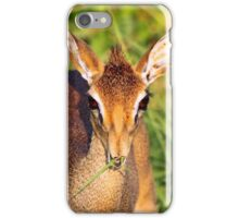 Nibbles iPhone Case/Skin