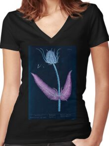 A curious herbal Elisabeth Blackwell John Norse Samuel Harding 1737 0134 Wild Teasel Inverted Women's Fitted V-Neck T-Shirt