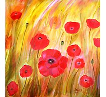 Field of Poppies- Acrylic Painting Photographic Print