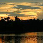 Golden Hour at Baltz Lake by Susan Blevins