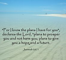 Jeremiah 29:11 by Dilshara Hill
