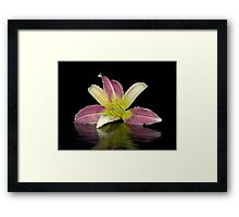 Visit from Winnie Framed Print