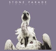 Stone Parade Vulture  by stoneparade