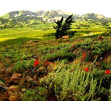 A View of the Wasatch Mountains, Utah. by JoAnn Glennie