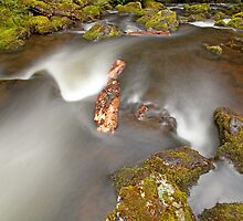 Hidden Falls Creek V by tinnieopener