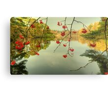 The Red Berries of Autumn Metal Print