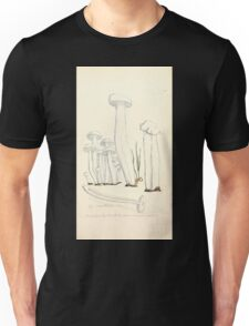 Coloured figures of English fungi or mushrooms James Sowerby 1809 0789 Unisex T-Shirt