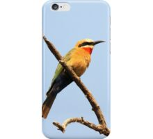 White Fronted Bee Eater I iPhone Case/Skin