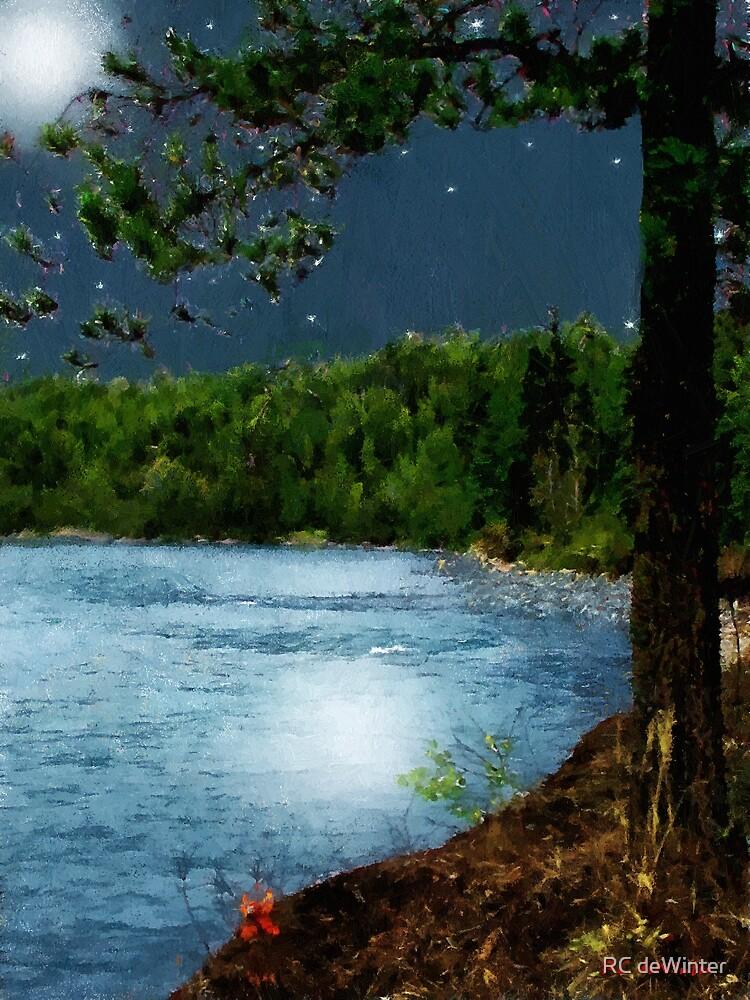 Moonstruck (My Starry Night) by RC deWinter