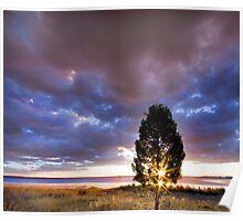 Coolmunda Sunstars - Inglewood Qld Australia Poster