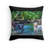 Spinone - Two is Company Throw Pillow