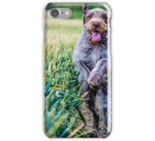 Spinone - Coming at ya iPhone Case/Skin