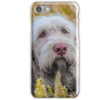 Awaiting Command iPhone Case/Skin
