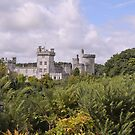 Dromoland Castle Co Clare Ireland by Sean  Carroll