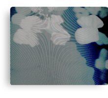 Experimental Photography: Holograms Are Surreal Canvas Print