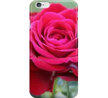 That's Amore iPhone Case/Skin