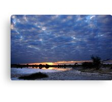 Blue sunset - Okavango Delta, Botswana Canvas Print