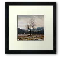 Winter Plains Framed Print