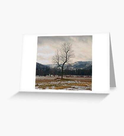 Winter Plains Greeting Card