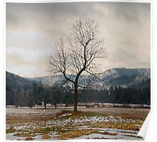 Winter Plains Poster