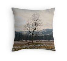 Winter Plains Throw Pillow