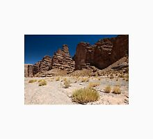 erosion landscape, Andes Unisex T-Shirt