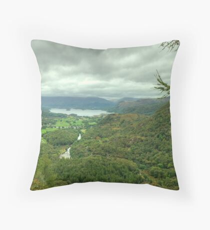 The View North.. Throw Pillow