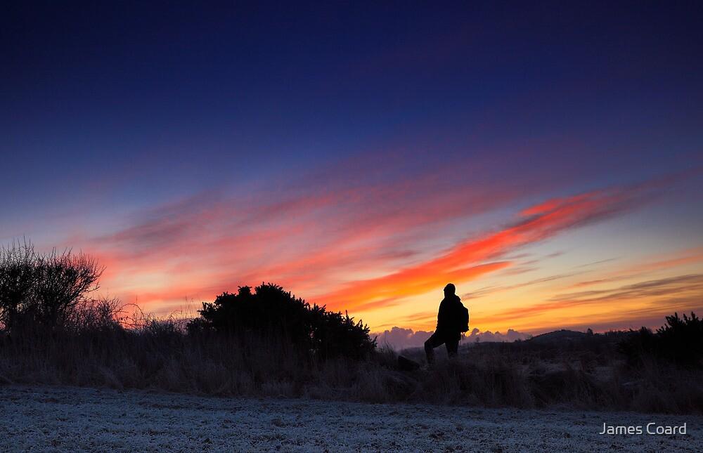 Morning Walk by James Coard