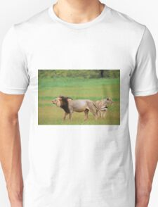 male lion and lioness standing in Kalahari T-Shirt