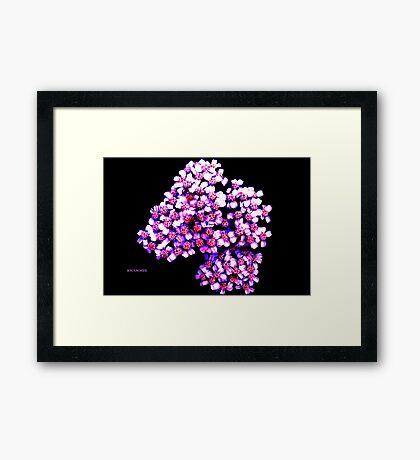 RIBBON FLOWERS Framed Print