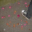 Petals by Laurent Hunziker