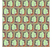 Trees tiled pattern Photographic Print