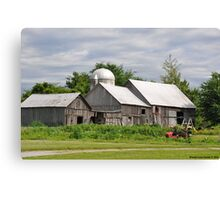 Weathered with Age Canvas Print