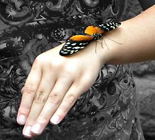 Butterfly on girls hand by venny
