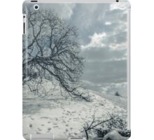 Begin the melting procedure iPad Case/Skin