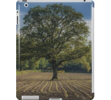 Watching over the newcomers iPad Case/Skin