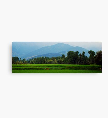 Green Velly & Hills Canvas Print