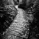 Follow Me by Paul Moore