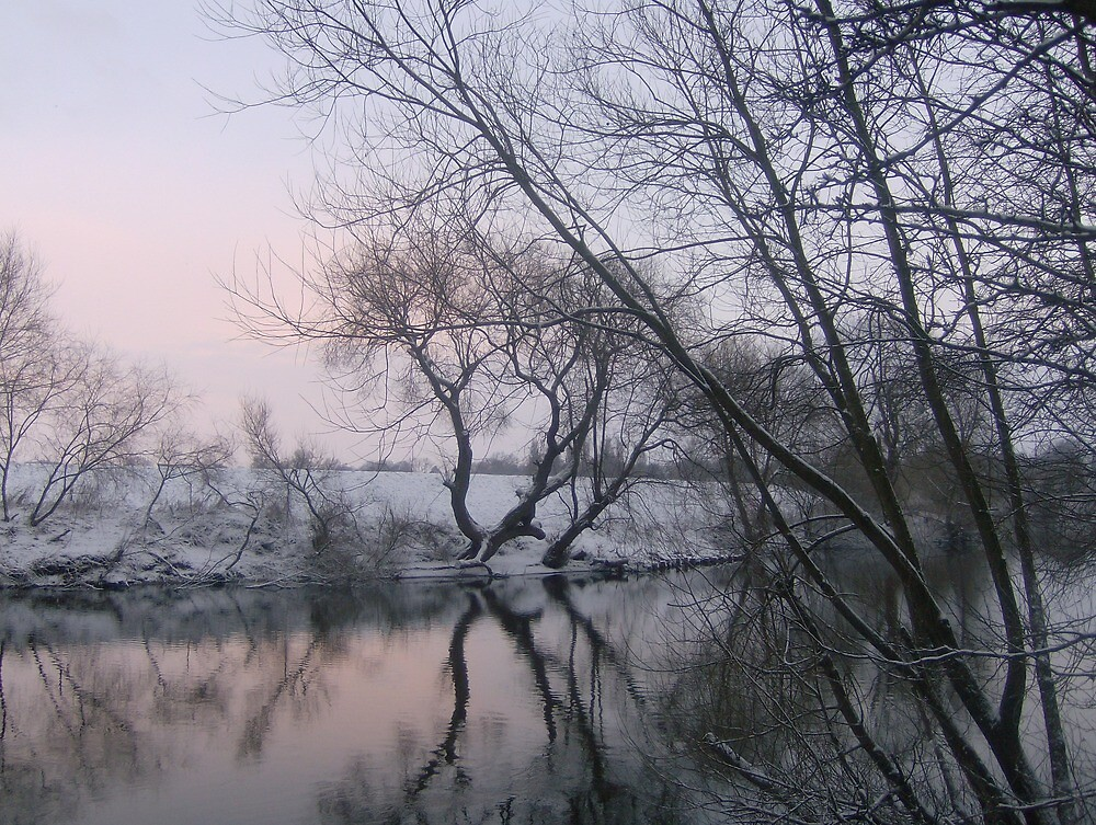 Snowy day by the riverside by Matthew King