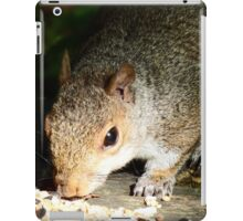 Squirrel eating his seed and nuts iPad Case/Skin