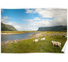 Landscape scene Norway Poster
