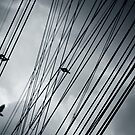 Sky cables by Laurent Hunziker