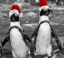 Penguins with Santa Claus caps Sticker
