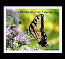 Butterfly and bee (Sharing brings sweet rewards) by Layla Morgan Wilde
