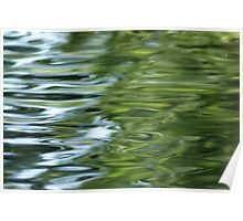 green reflections Poster