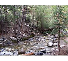 Zapata Creek Photographic Print