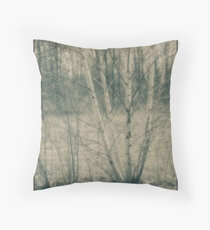 untitled - Lou Campbell nature preserve birch tree Throw Pillow